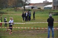 thumbs dsc 0077 Mistrzostwach Wielkopolski w Sztafetowych Biegach Przełajowych